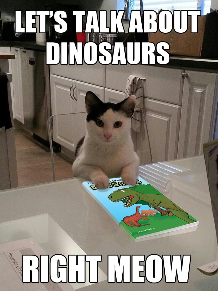 This cat wants to talk about dinosaurs. Right meow.